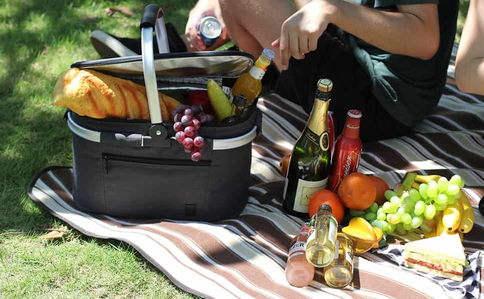 nevera portatil pequeña para picnic
